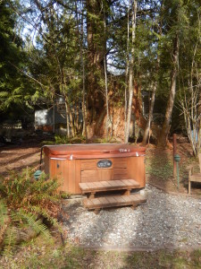 Come and enjoy the Hottub, in a beautiful, park-like setting!
